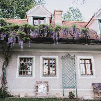 Constantin_Wedding_Waldhochzeit-125